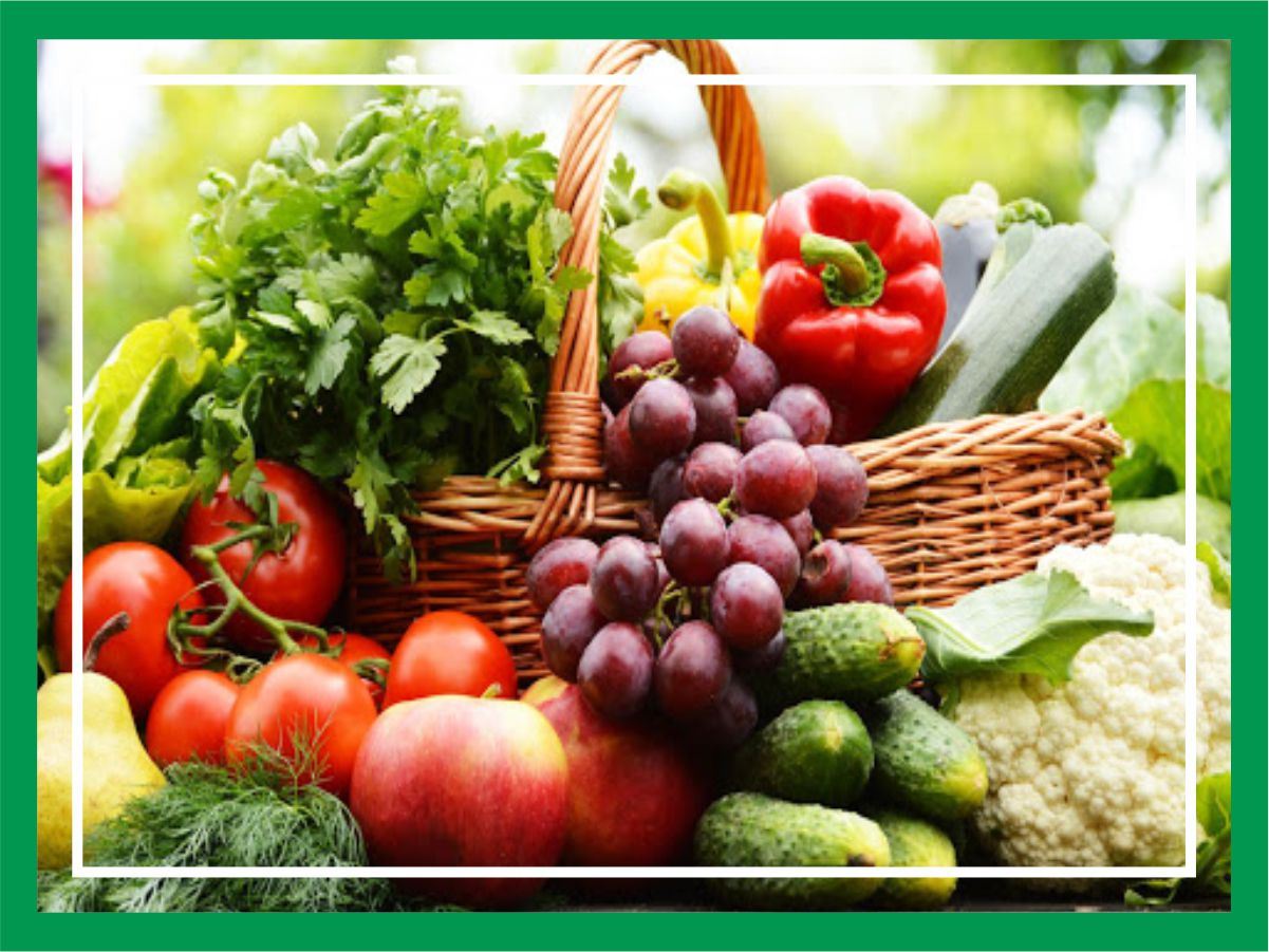 Plants and Vegetable Products